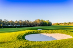 Back-9-at-Talis-Park-golfcourse-Naples-Dan-Walsh-Realtor