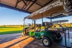 Golf-cart-at-Talis-Park-Clubhouse-Naples-Dan-Walsh-Realtor