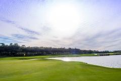 Luxury-Naples-Golf-Talis-Park-Dan-Walsh-Realtor